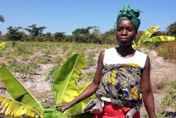 A woman in Angola works in the field. Photos: LWF/S. Oftadeh