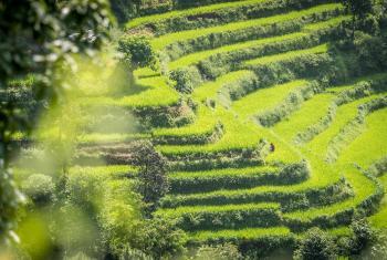 Kavre District, Nepal: Photo: LWF/Albin Hillert