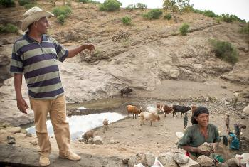 New LWF irrigation schemes will capture and divert the streams that have a higher volume of water. Photo: LWF Ethiopia