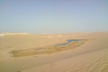 Water source in the desert near Siwa. Photo: Stéphane Gallay
