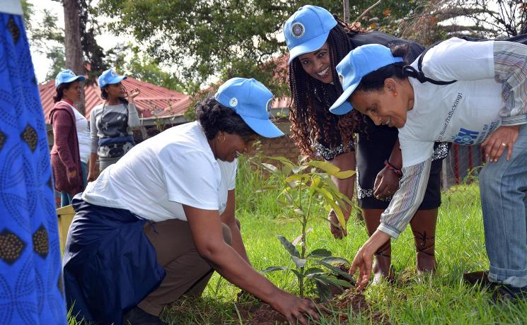 EECMY staff take part in the country-wide initiative to plant trees as part of the church's commitment to care for creation and mitigate against climate change. Photo: EECMY/Abeya Wakwoya