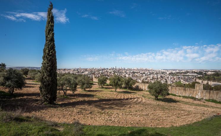28 February 2020 photo of East Jerusalem. Photo: LWF/Albin Hillert
