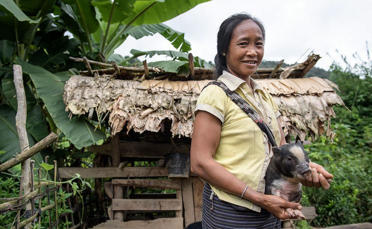 A Laotian woman with a piglet provided by the LWF. Photo: LWF