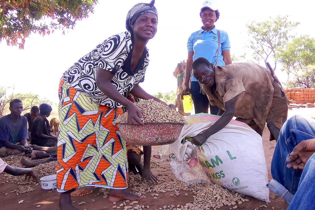 LWF in CAR is supporting displaced communities with food security by supporting groups of agricultural producers and through school feeding programs. Photo: LWF/Central African Republic.