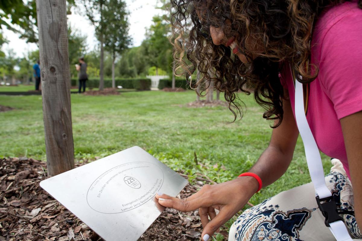 A young Workshop Wittenberg participant looks at her church's tree in the Luthergarten in Wittenberg. Young Lutherans are getting ready to leave the workshop keen to put climate change programs in place. Photo: LWF/Marko Schoeneberg