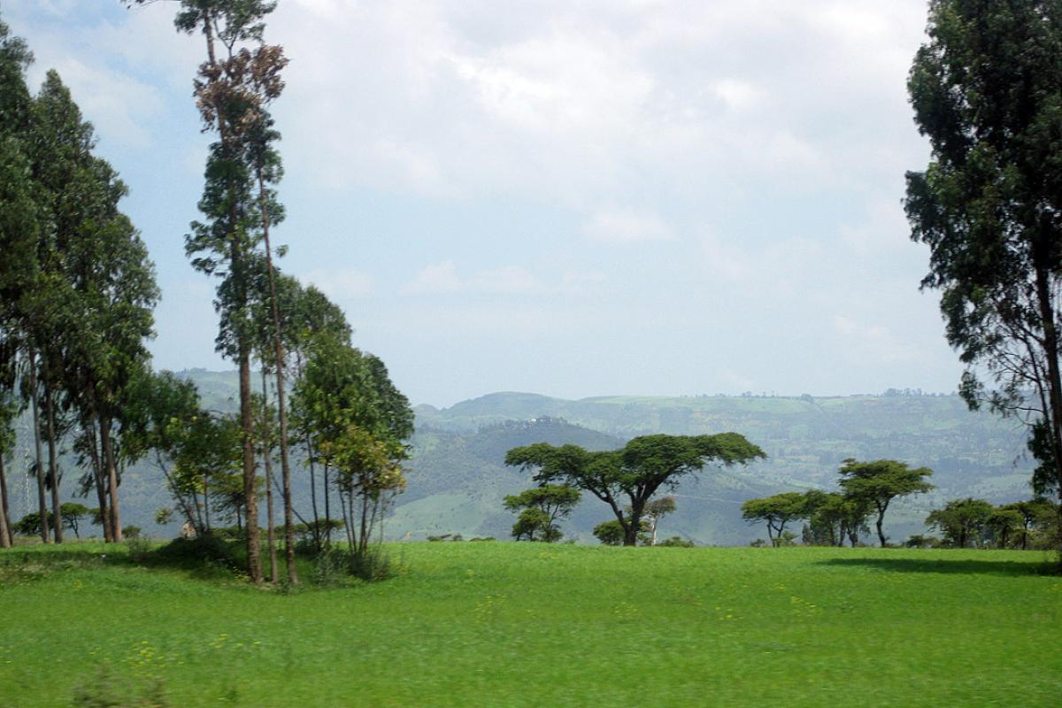 Ethiopian landscape. Photo: LWF/M. Egli