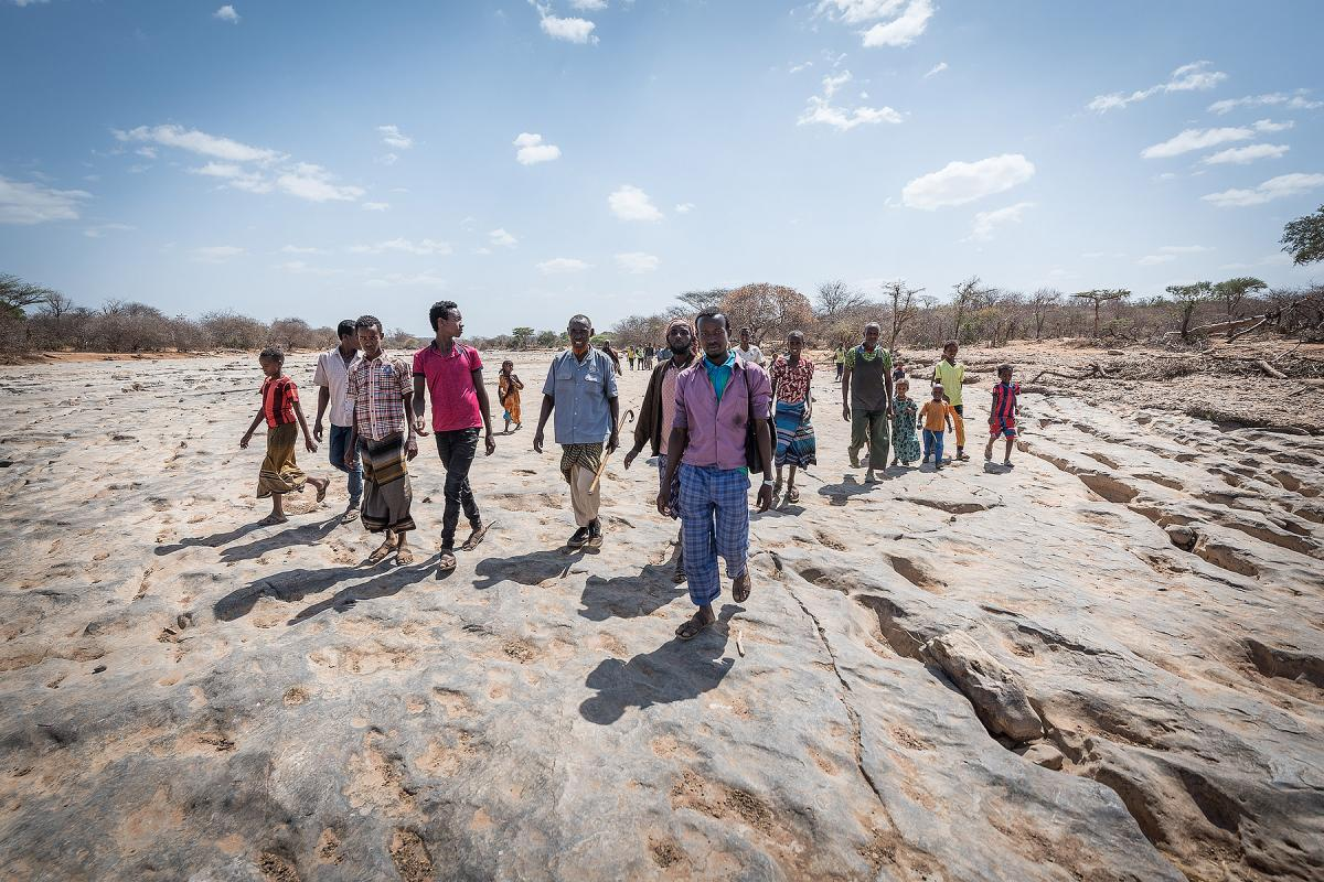A group of Oromo IDPs walk on the dry riverbed near Burka Dare IDP site in Ethiopia. The Lutheran World Federation supports internally displaced people in several regions of Ethiopia, through emergency response on water, sanitation and hygiene (WASH) as well as long-term development and empowerment projects, to help build resilience and adapt communities' lifestyles to a changing climate. 27 January 2019. Photo: LWF/Albin Hillert
