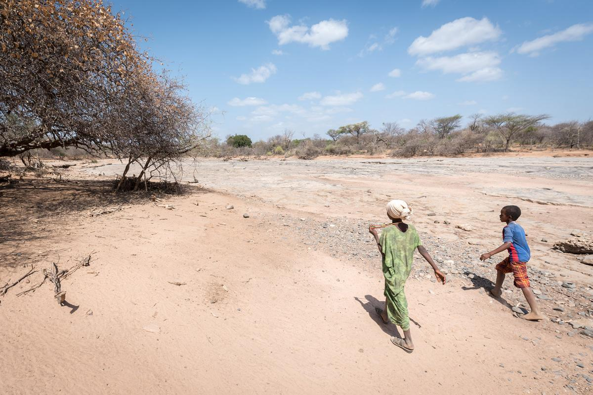 The Lutheran World Federation supports internally displaced people in several regions of Ethiopia, through emergency response on water, sanitation, and hygiene (WASH) as well as long-term development and empowerment projects, to help build resilience and adapt communities' lifestyles to a changing climate. Photo: LWF/Albin Hillert