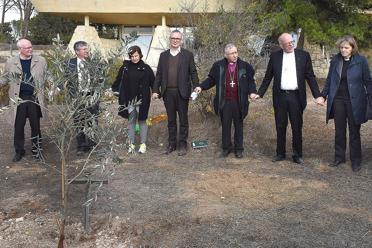 An olive tree that signifies close ties the lutheran world federation as a symbol of close ties between the elcjhl and the lwf a delegation of the gnclwf planted an olive tree in jerusalem photo epddebbie hill buycottarizona Choice Image
