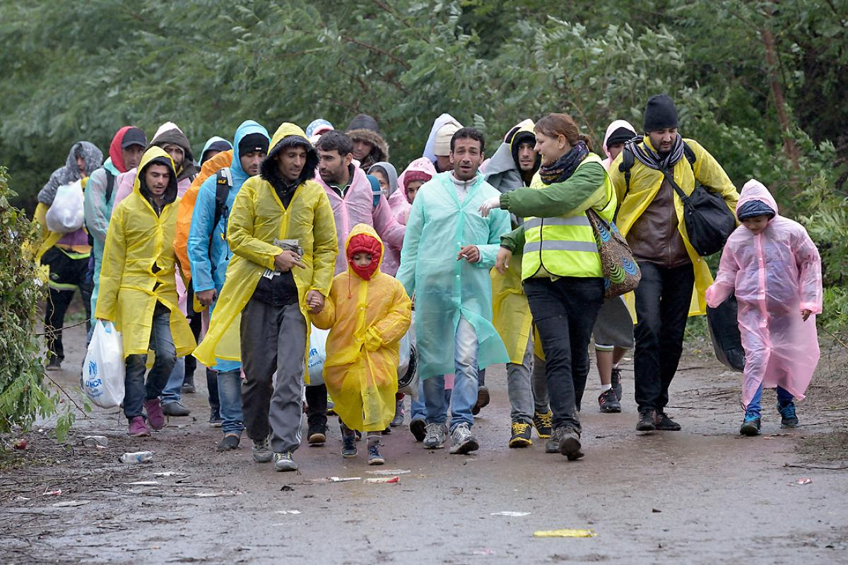 Escorted by a Czech volunteer (in the high-visibility vest), refugees approach the border into Croatia near the Serbian village of Berkasovo. Photo: Paul Jeffrey