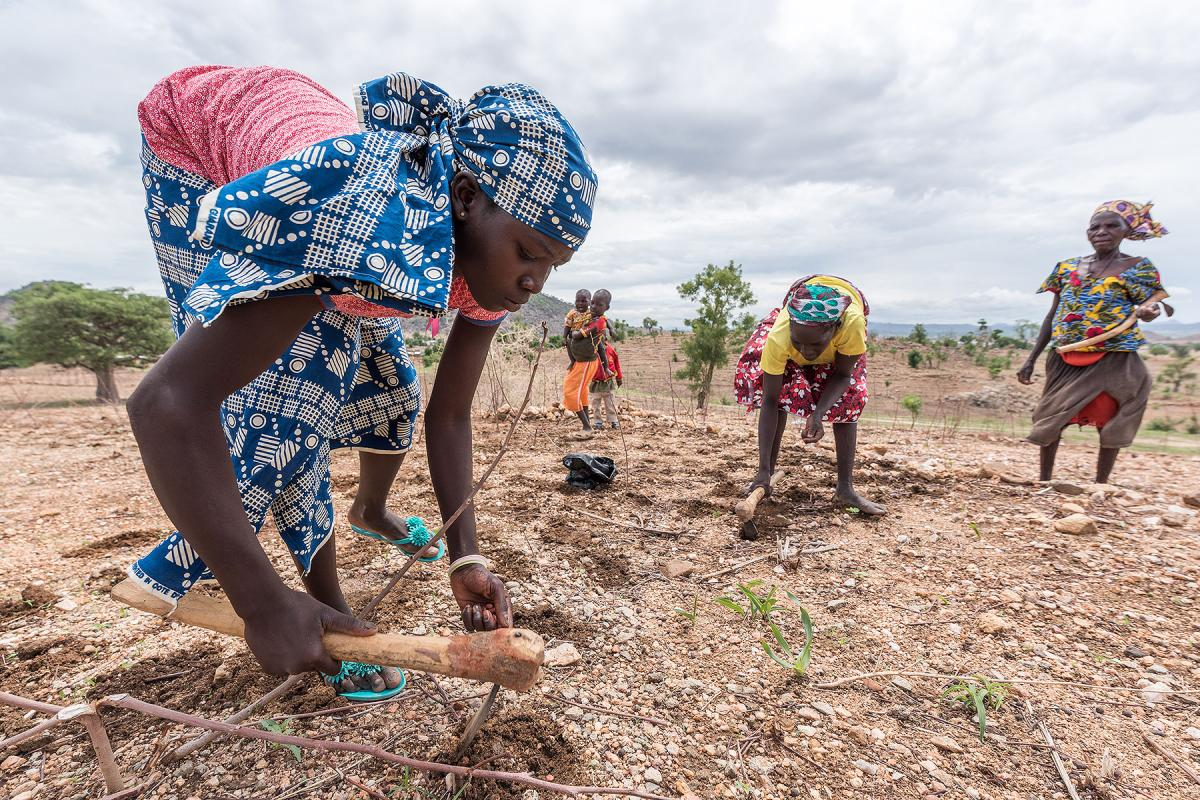 LWFs accreditation as observer to the UNEP Assembly provides a significant opportunity to channel the voices of those people most affected by environmental problems caused by climate change. The photo shows refugee women sowing groundnut near the Minawao camp for Nigerian refugees in Cameroon. Photo: LWF/Albin Hillert