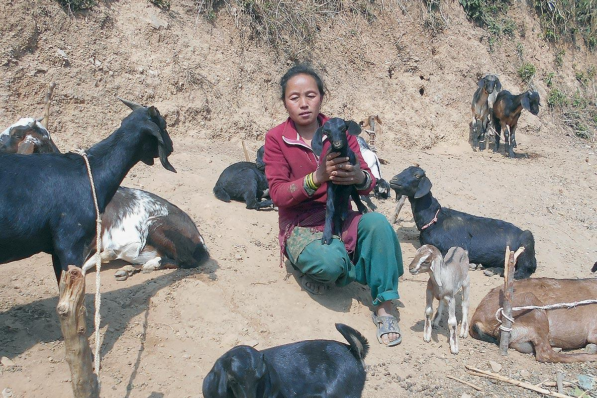 Asmita Nyasur, an indigenous woman in Nepal, used financial support provided by LWF Nepal to recover from the 2015 earthquake. Photo: LWF/Ram Sharan Sedhai