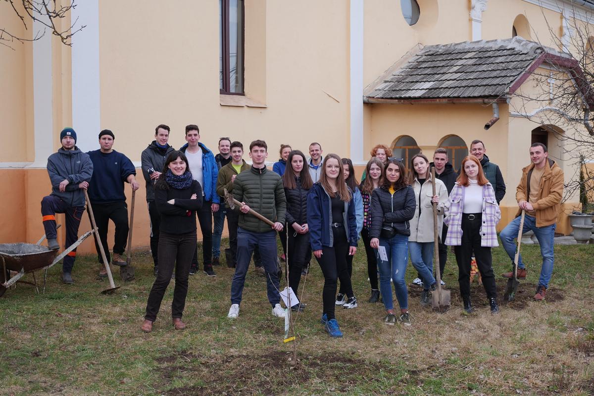 Youth of the Evangelical Lutheran Church in Romania planting saplings in the church garden of the Alszeg Church in Hosszúfalu. Photo: EVIKE
